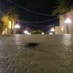 Black cat, Jaffa